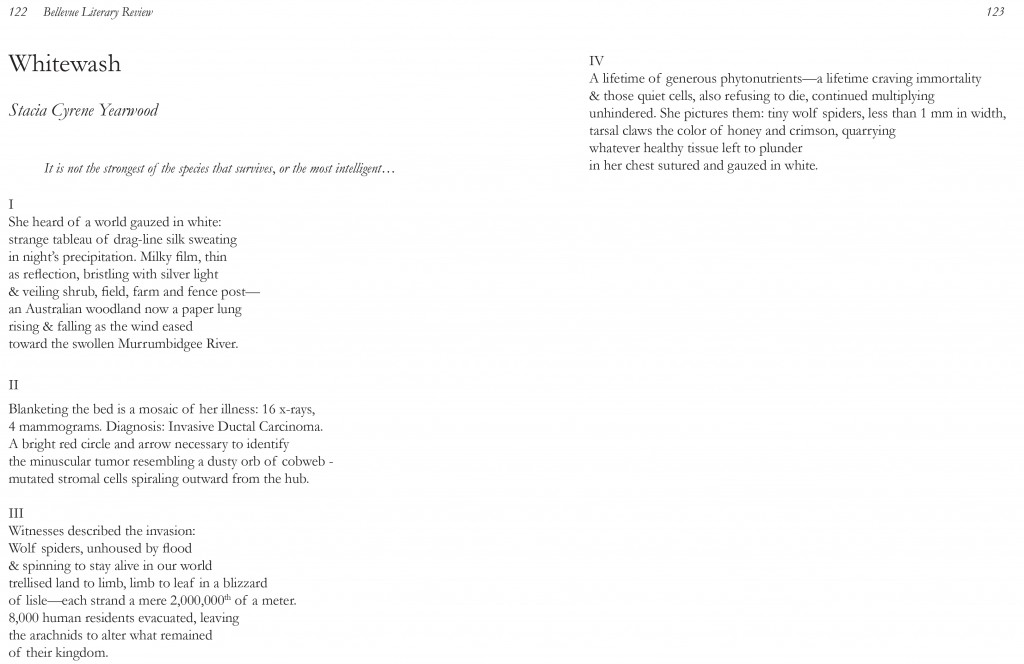 A Poem: Whitewash