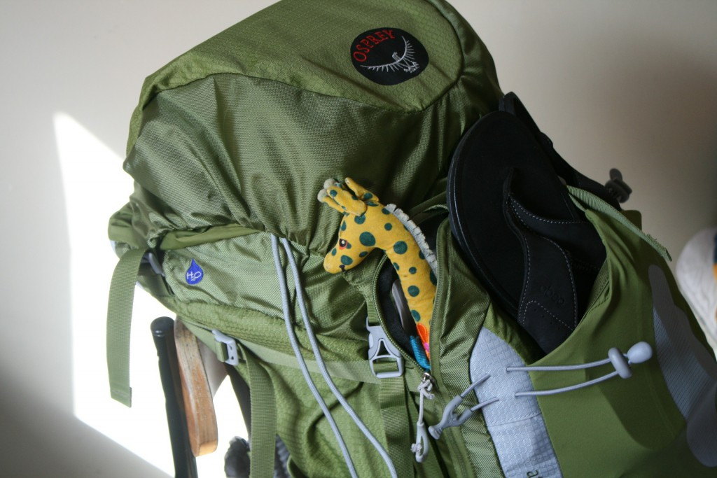 Backpack packed and ready to go!
