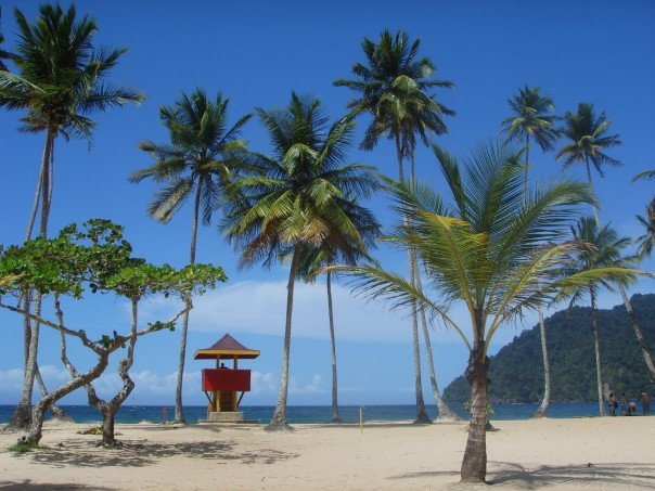 Maracas Bay, the Trinidad's most popular beach, is treasured as much for Bake and Shark, a delicious fried fish sandwich, as for its calm waters and idyllic scenery.