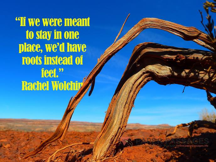 """If we were meant to stay in one place, we'd have roots instead of feet."" Rachel Wolchin"